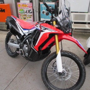 ホンダ CRF250 RALLY Type LD入荷