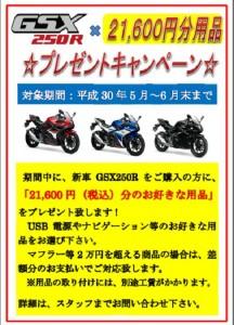 GSX250用品